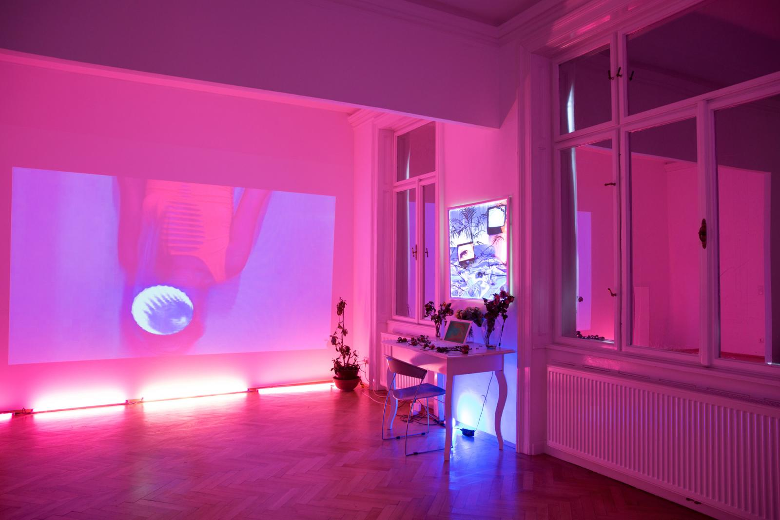 "Signe Pierce ""Virtual Normality"" (2017); installation view at Galerie Nathalie Halgand Copyright the artis and Galerie Nathalie Halgand"