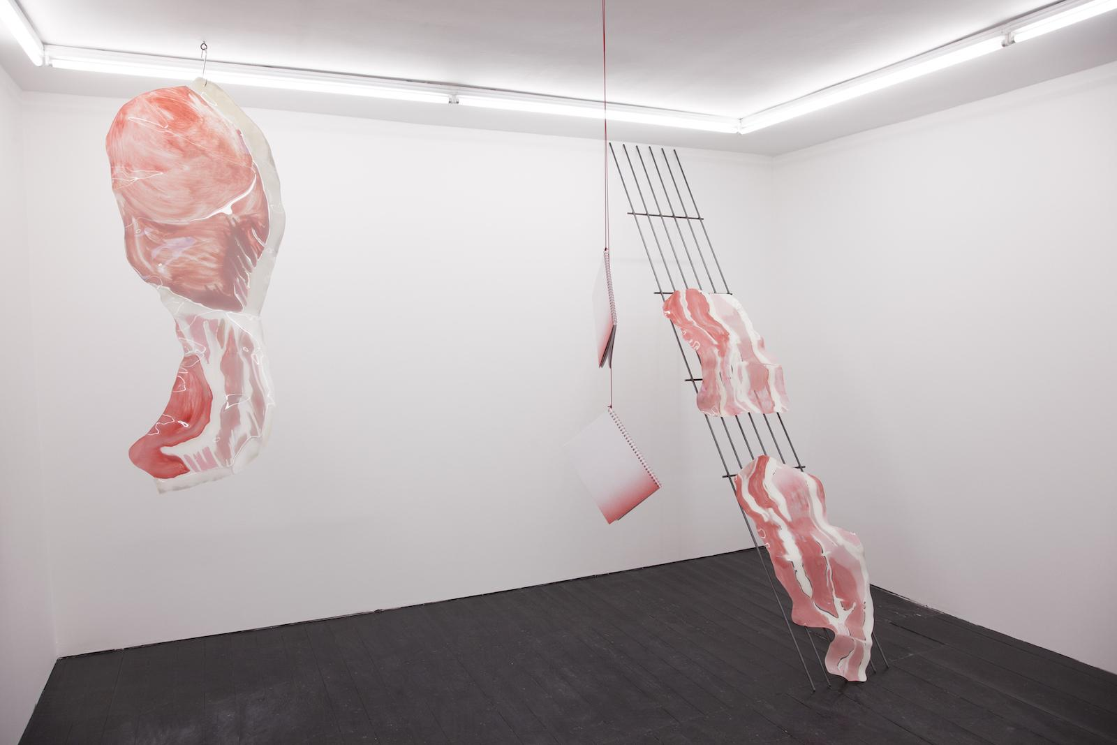 Kasia Fudakowski installation view at ChertLüdde