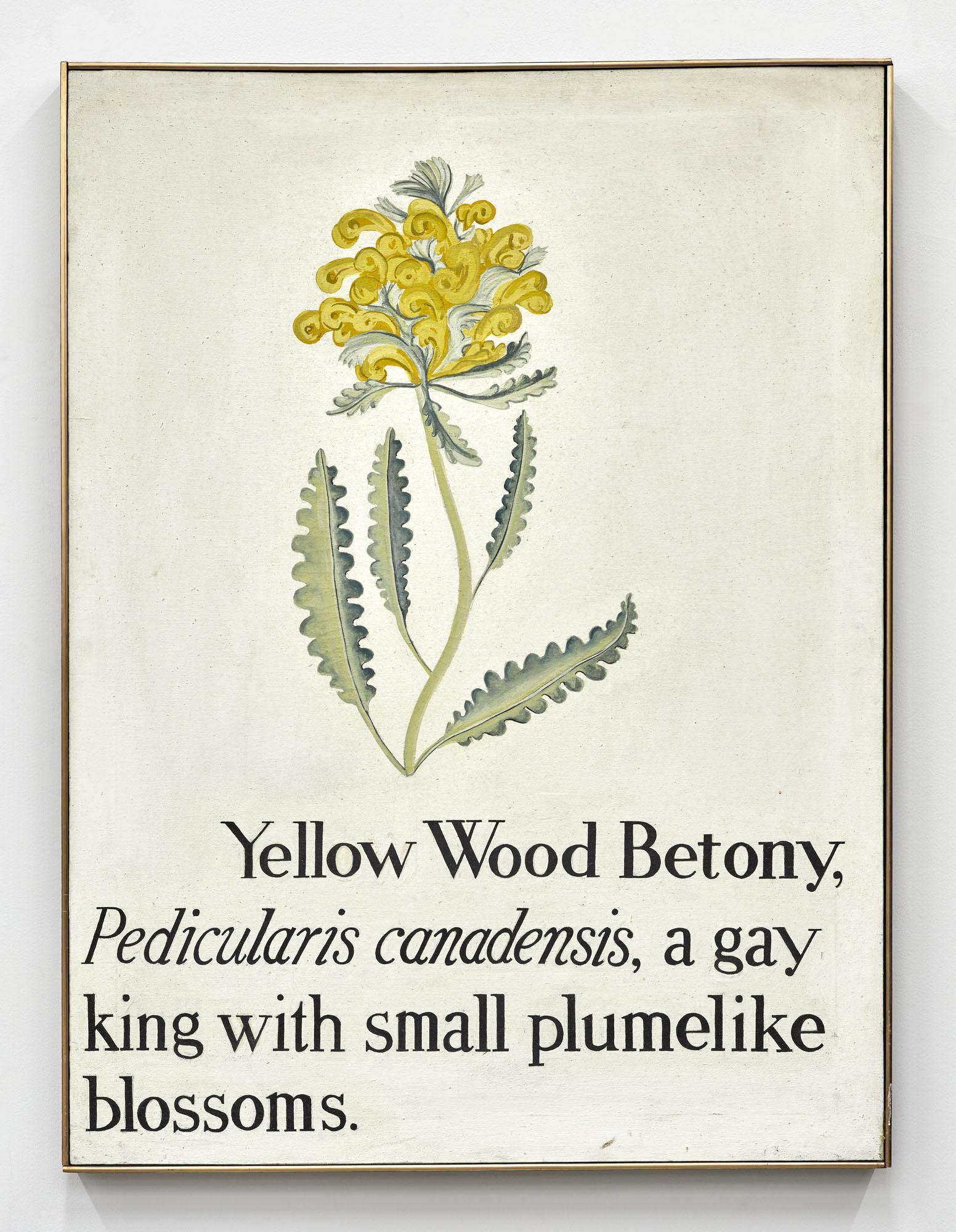 Vern Blosum,/Betony/, 1962, oil on canvas, 101.6 × 76.2 cm