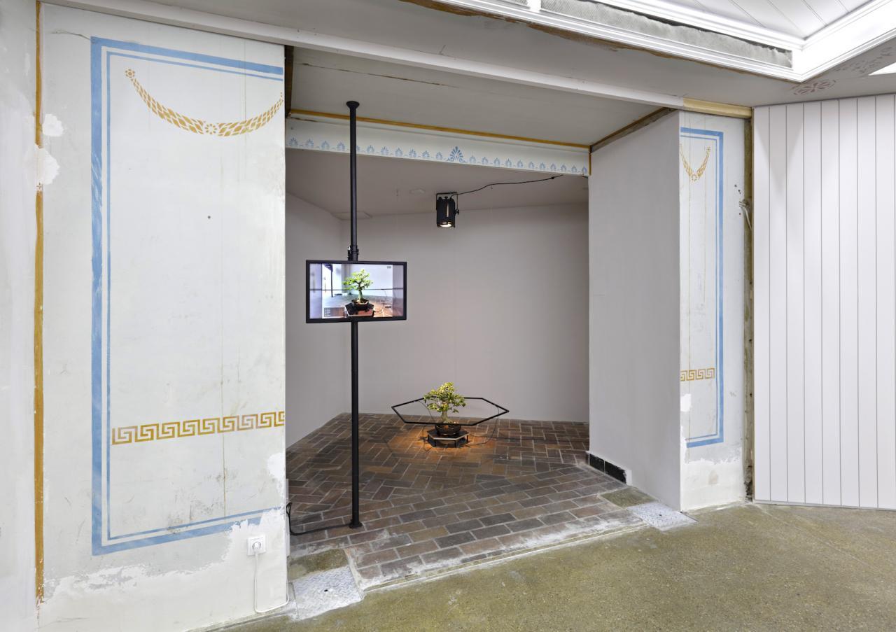 terra0 Premna Daemon (2018) Installation view, Proof of Work, Schinkel Pavillon, 2018 Photo: Hans-Georg Gaul