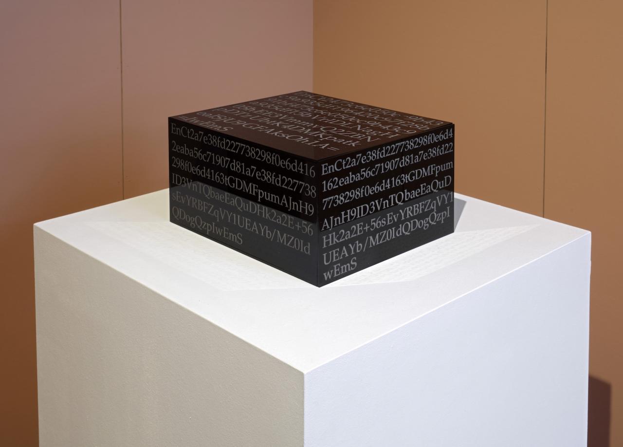 Aria Dean BLACKBOX (2017) Installation view, Proof of Work, Schinkel Pavillon, 2018 Photo: Hans-Georg Gaul
