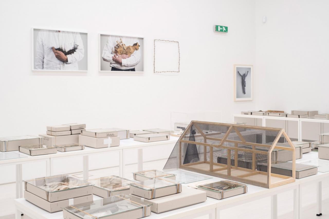 Lois Weinberger Debris Field (2010-16, installation view) Photo: Mathias Voelzke