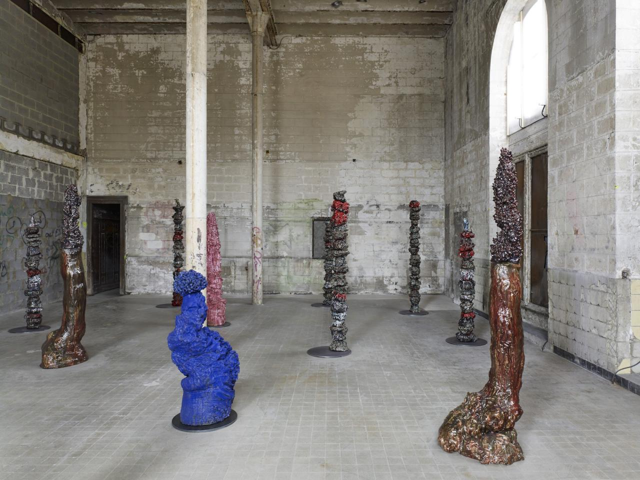 Jamie Cameron, installation view
