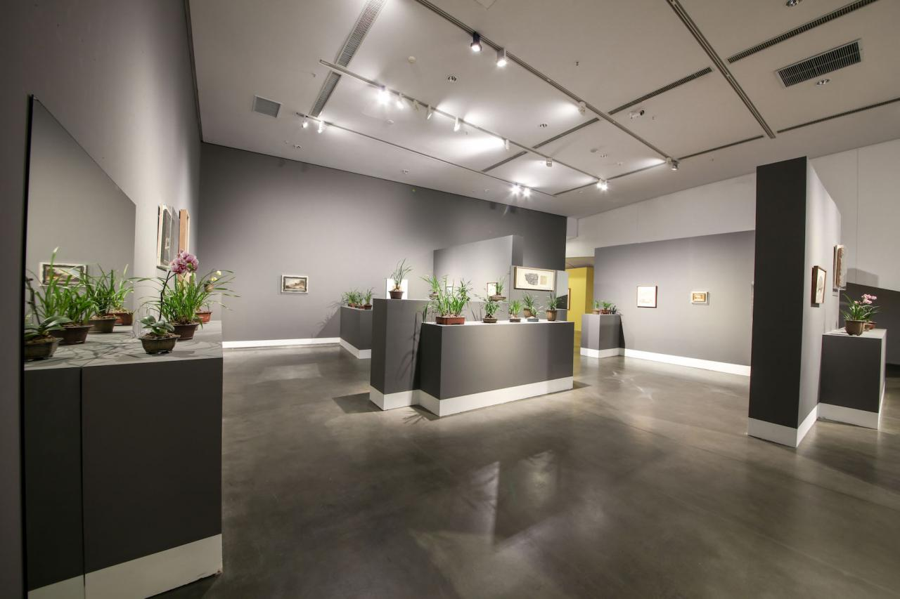 Lui Ding The Orchid Room (2018) © Photo: Courtesythe Yinchuan Biennale
