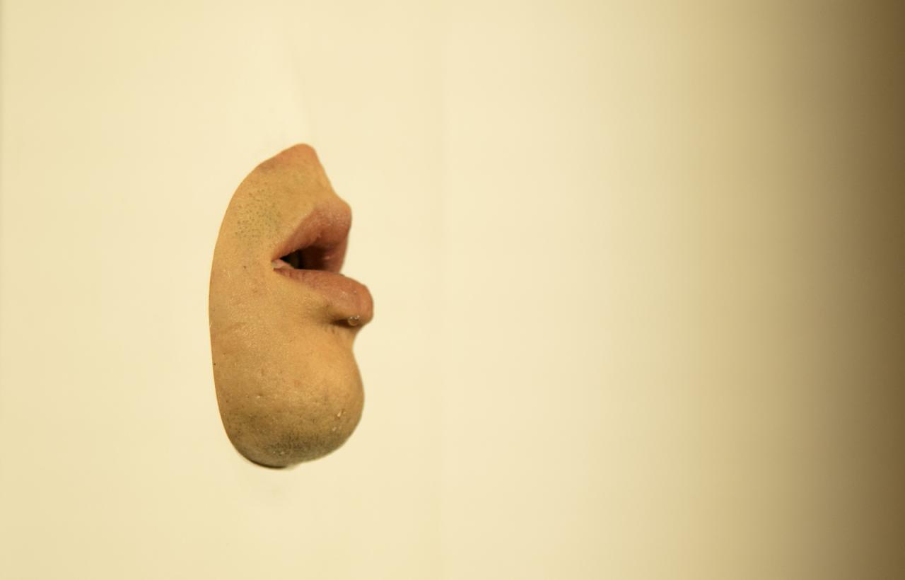 Wang Yuyang Mouth (2015)