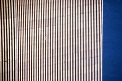 Gelatin, The B-Thing , 2000 World Trade Center I. Photo: © Gelitin