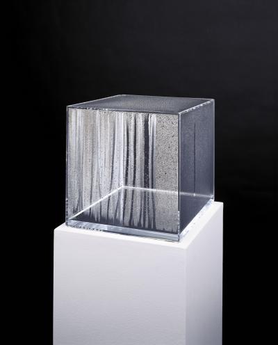 Hans Haacke Condensation Cube , 1963–65 © Generali Foundation / VBK, Wien 2013 Photo: Werner Kaligofs
