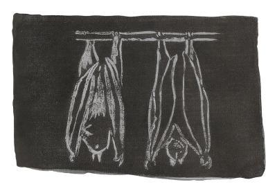 Isael Maxacali, Xunum [Bat] ,2005, Watercolour, 15 x 10.5 cm