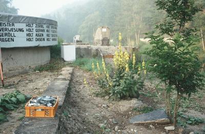 Ruderal Society Area II , 2004–, Studio Mirror Factory, Lower Austria