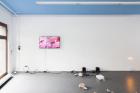 Installation view from left: Noele Ody, Eoghan Ryan, Aura Rosenberg