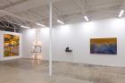 """Plastic Surgery, to look like you""(2017), exhibition view atgalerie frank elbaz, Dallas, TX, USA Photo: Kevin Todora"
