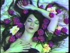 Still from Possibly in Michigan , 1983, video, 12 min., colour, sound