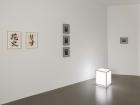 "Installation view of ""Erwin Kneihsl: Sun"" atGalerie Guido W. Baudach"